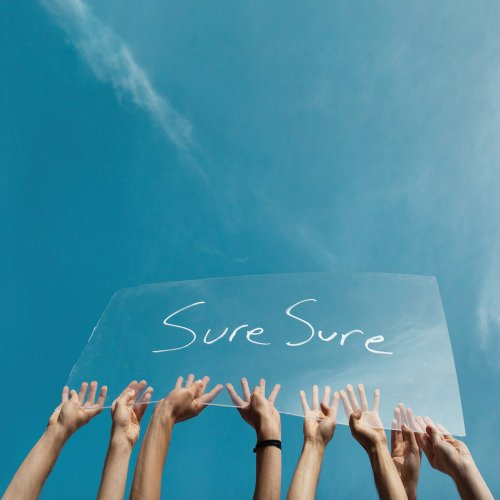 Image result for sure sure by sure sure album cover